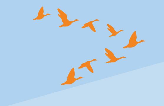 wp to laravel migration